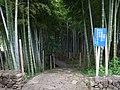 お願い 竹の子を 取らないで下さい。 (7172687907).jpg