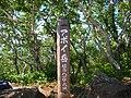 アポイ山頂(Top of the Mt. Apoi) - panoramio.jpg