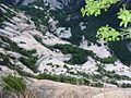 东峰往下看 - panoramio.jpg