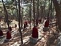 五百罗汉园 - 500 Arhat Statues Garden - 2012.04 - panoramio.jpg