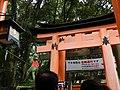 千本鳥居は 右側通行です (33674958361).jpg