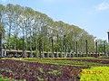 安徽省淮南市田家庵龙湖公园景色 - panoramio.jpg
