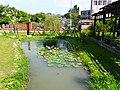 山腳國小生態池 Eco pond in Shanjiao Elementary School - panoramio (1).jpg