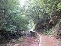 峡谷小径 - panoramio.jpg