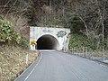 満壽トンネル - panoramio.jpg