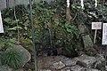 穴澤天神社 - panoramio (39).jpg