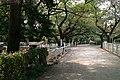 馬事公苑 - panoramio (18).jpg
