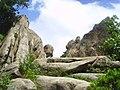 관악산 살아있는 바위들 - panoramio.jpg