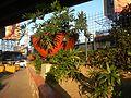 01223jfCircumferential Road 7 Bagong Ilog Pasig Boulevard Flyover Vargas Centennial Bridgefvf.jpg