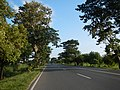 01361jfWest Halls Highways Fields Cupang Balanga City Bataanfvf 23.JPG