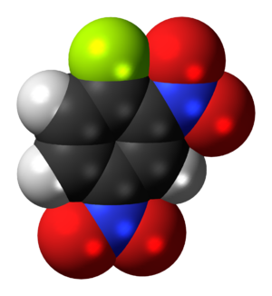 1-Fluoro-2,4-dinitrobenzene - Image: 1 Fluoro 2,4 dinitrobenzene 3D spacefill