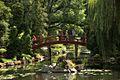 1166aviki Park szczytnicki. Foto Barbara Maliszewska.jpg