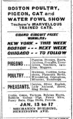 1903 cats MechanicsBuilding HuntingtonAve BostonGlobe January9.png