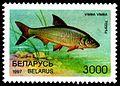 1997. Stamp of Belarus 0224.jpg