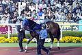 2004-4-11-DaiwaelCielo.JPG