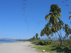 English: Ixtapa, Playa Linda, Guerrero, Mexico