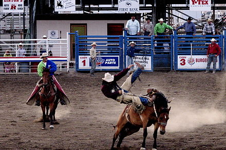 "Saddle bronc riding; in rough stock events, the animal usually ""wins."" 2006-07-28 - United States - Wyoming - Cody - Rodeo - Cowboy.jpg"