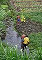 2010-09-12 13-18-08 Tanzania Mwanza Mwanza.jpg