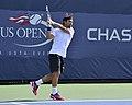2013 US Open (Tennis) - Fabio Fognini (9665976014).jpg