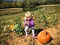 2015-10-11 E0078 iOS (21820139034).jpg