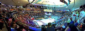 2015 World Men's Handball Championship - The final match, Qatar vs France