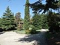 2018-09-14 Parco delle Terme Tettuccio, zona est 06.jpg