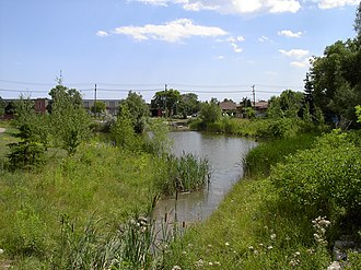 Taylor-Massey Creek - Terraview Willowfield Park