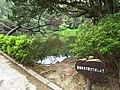3 Chome-13 Saiwai, Naka-ku, Hamamatsu-shi, Shizuoka-ken 433-8123, Japan - panoramio (3).jpg