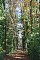 48329 Havixbeck, Germany - panoramio (26).jpg