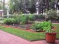 5621. St. Petersburg. Summer Garden (3).jpg