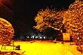 61-101-5003 Сквер на вулиці Чорновола, Тернопіль.jpg