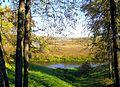 622. Museum-Estate Trigorskoye. Sorot River.jpg
