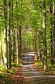 664 71 Lažánky, Czech Republic - panoramio (5).jpg
