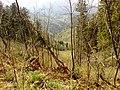 976 62 Brusno, Slovakia - panoramio (9).jpg