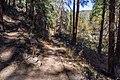 A.B. Young Trail (38680291141).jpg