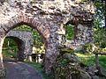 ALIM0099 Burgruine Hohnstein, Neustadt, Reste des Burgtors.jpg
