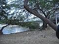APreciosdeRemate Rio Ranchería en Rioacha - panoramio.jpg
