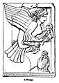 A Harpy. - Engravings on Wood.jpg