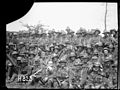 A New Zealand battalion after the Battle of Messines, World War I (21640063595).jpg