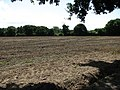 A bare field - geograph.org.uk - 918086.jpg