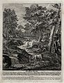 A menagerie with a stag at a watering place and foxes, hares Wellcome V0021031.jpg