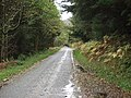 A wet day but put your waterproofs on and all is fine - geograph.org.uk - 72083.jpg