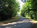 Access road to Hatfield Park Essex England 3.jpg