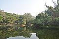 Acharya Jagadish Chandra Bose Indian Botanic Garden - Howrah 2011-01-08 9738.JPG