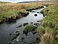 Afon Eden. - geograph.org.uk - 394932.jpg