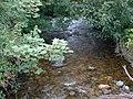 Afon Rhaeadr Fawr - geograph.org.uk - 48984.jpg