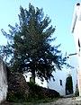 Alcoutim (Portugal) (32402411974).jpg
