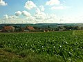 Alemanha, julho de 2011 - panoramio (5).jpg