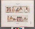 Altes Reich. Dynastie XII. Benihassan (Banî .Hasan Site)- Grab 2. Nordseite (NYPL b14291191-38145).jpg