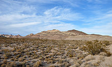 Hundreds of low, widely separated bushes populate a flat expanse of gravel that leads to a set of hills in the distance. The reddish hills, strongly banded by dissimilar rock layers, rise into a blue sky laced with filaments of cloud.